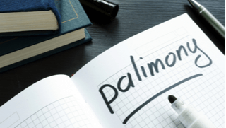 Palimony in Michigan? Are you entitled to Support?