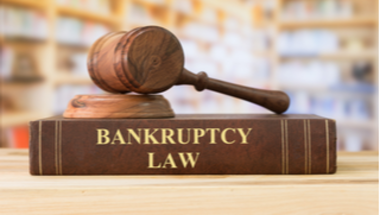 chapter 13 bankruptcy michigan
